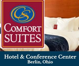 Comfort Suites Berlin